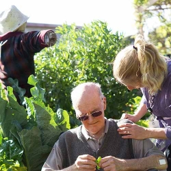 Tatura-back-garden-horticulture-therapy.jpg